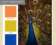 Orange, Yellow, Blue Color Palette 14