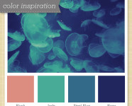 Pink, Green, Gray and Navy Color Palette 19