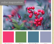 Red, Green, Blue & Purple Color Palette 30