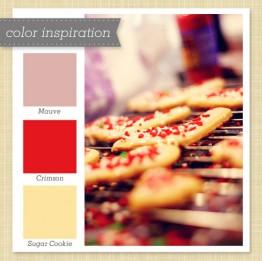 color31