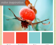 Pink, Red, Blue, and Jade Color Palette