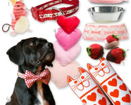 Valentine's Day Gifts for Dogs and Cats