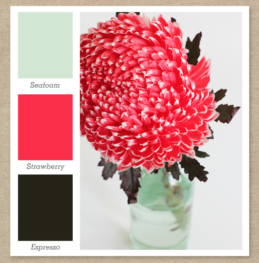 mint green bright pink dark brown color palette - Mint Green Color Scheme