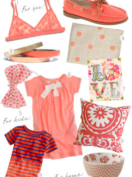 coral inspiration board for women, home, and kids