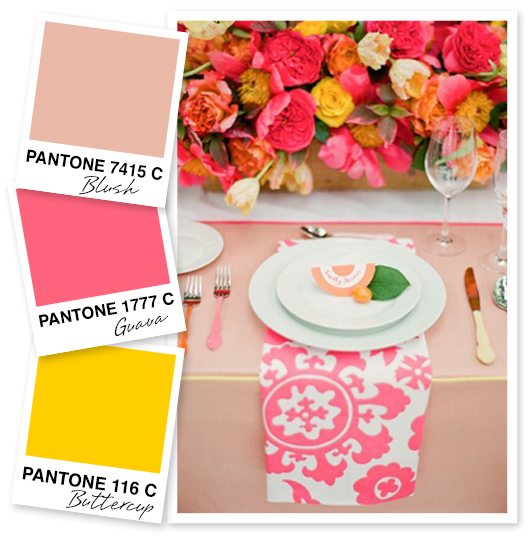 Blush Pink, Guava Pink, and Buttercup Yellow Color Palette | Sarah Hearts