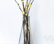 DIY West Elm Inspired Paper Flower Branches