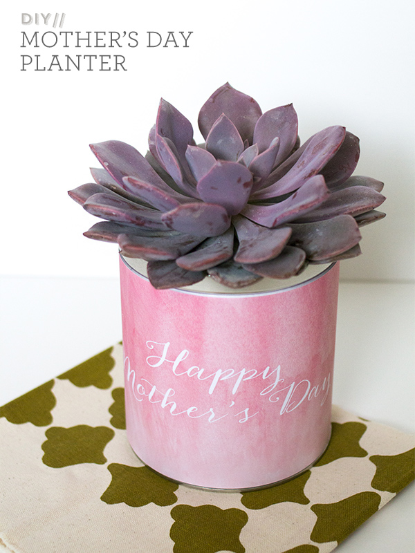 Simple DIY Mothers Day Planter Gift Sarah Hearts