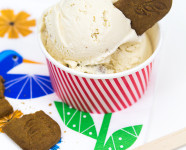 No-Cook Cookie Butter Ice Cream