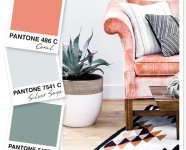 Coral, Gray, and Blue Spruce Color Palette