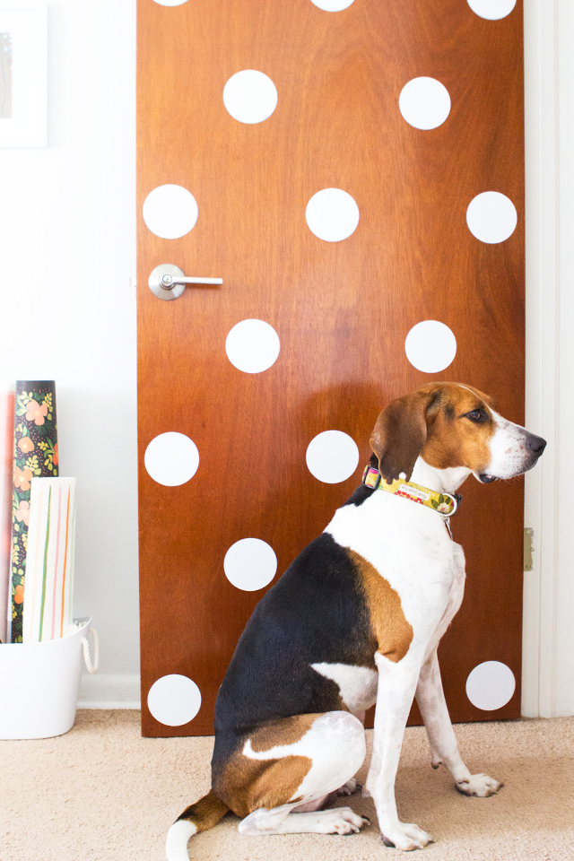 A cute pup and polka dots! Loving the look of this DIY polka dot door.