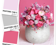 Lilac, Cool Gray and Rosy Pink Color Palette