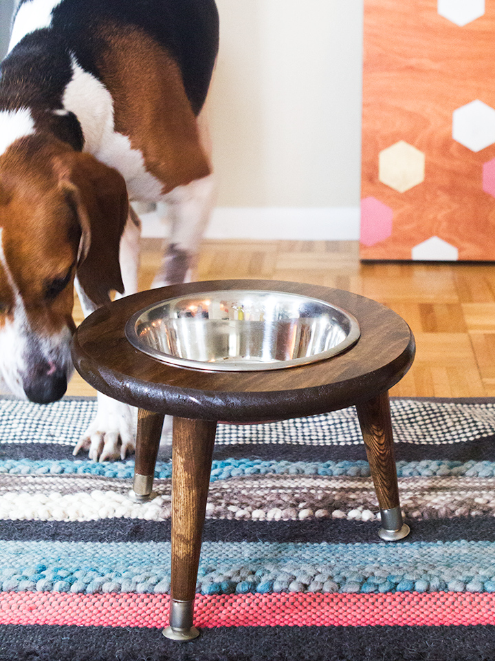 Love mid century furniture? Create this raised dog bowl stand for your mid century loving pup! (Click through for tutorial)