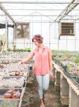 Rows and rows of succulents. My dream!