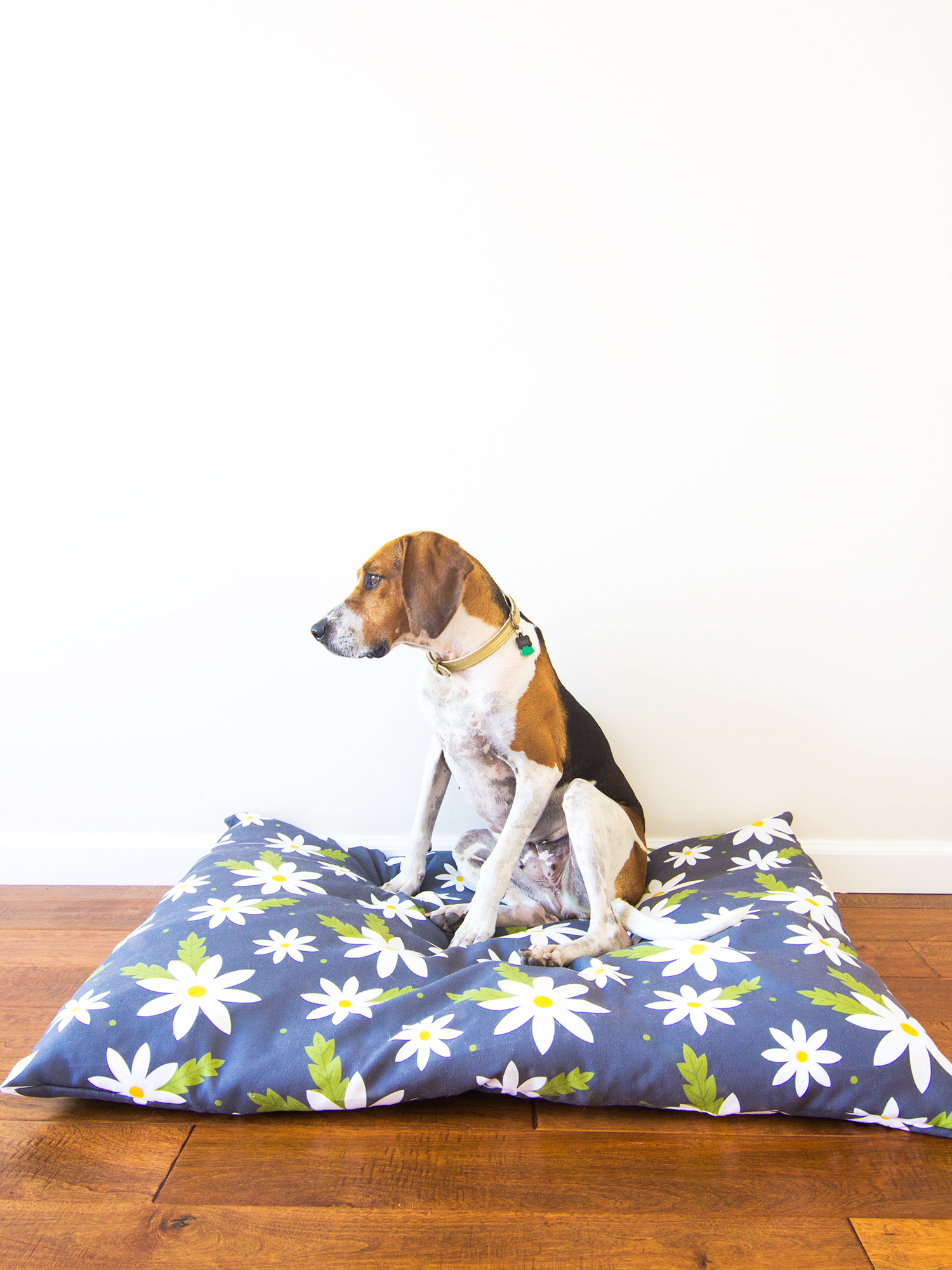 Create a unique bed for your dog with your own custom printed fabric! (Click through for step-by-step tutorial)
