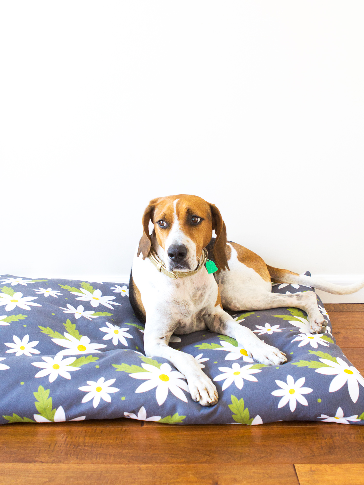 Pin Up Bed Covers Dog Bed
