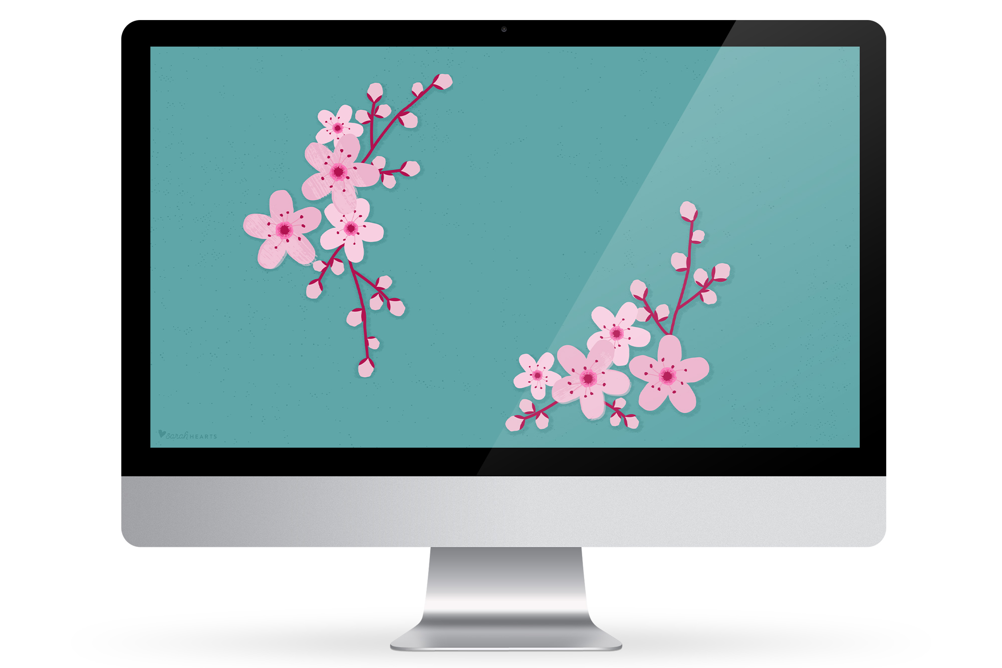 ... computer, phone or tablet with this free cherry blossom wallpaper