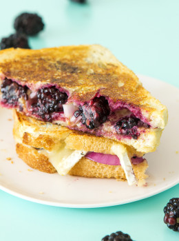 berry brie cheese melt