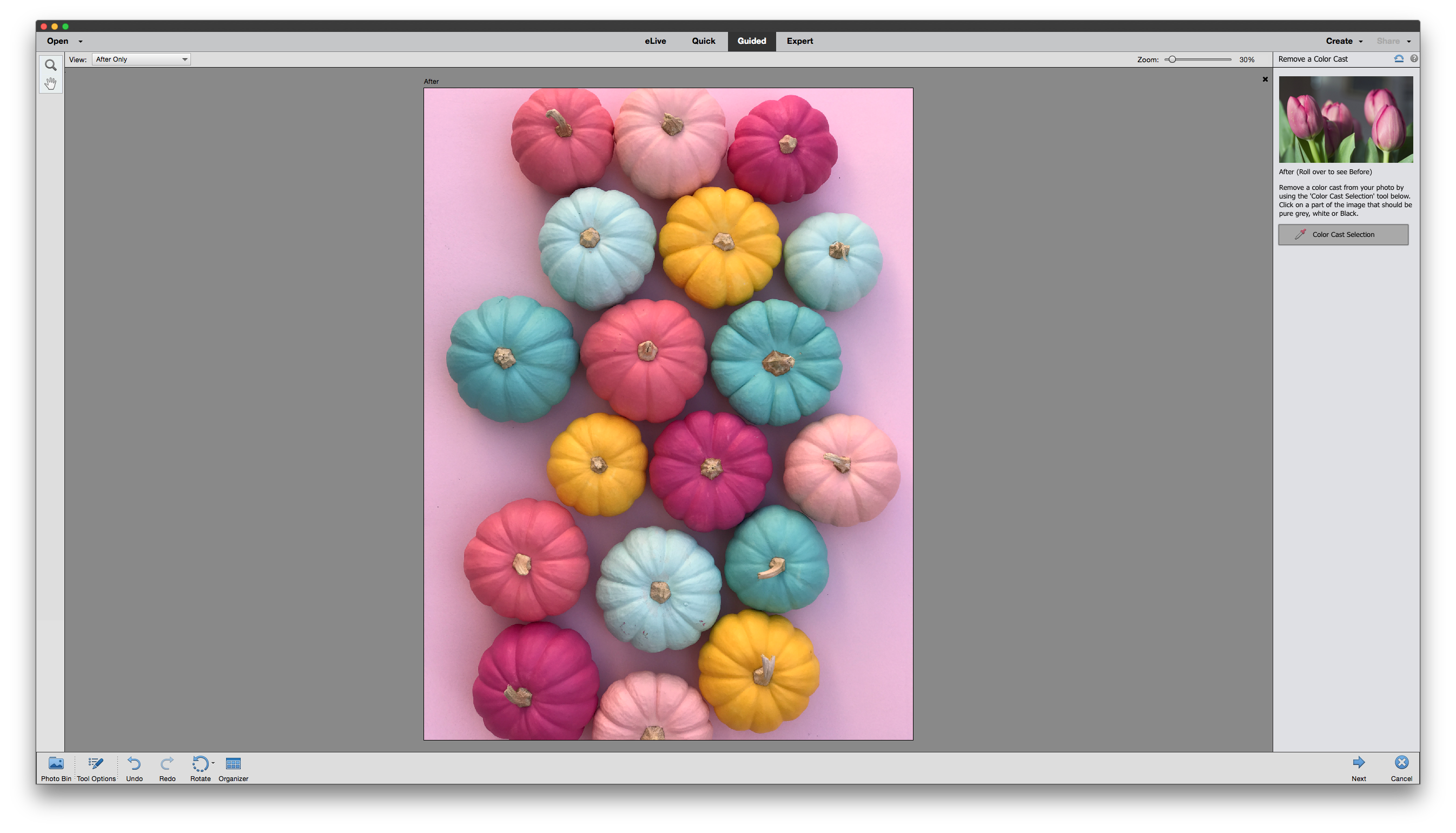 The Remove Color Cast guided edit in Photoshop Elements 15 makes it super easy to correct the white balance in a photo.