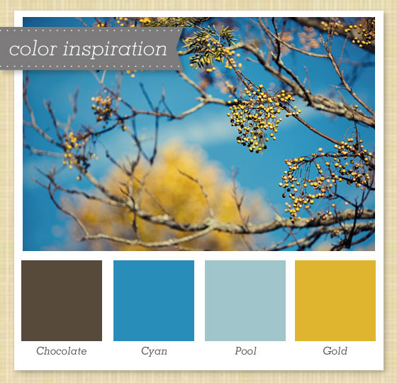 Brown Blue And Gold Color Palette
