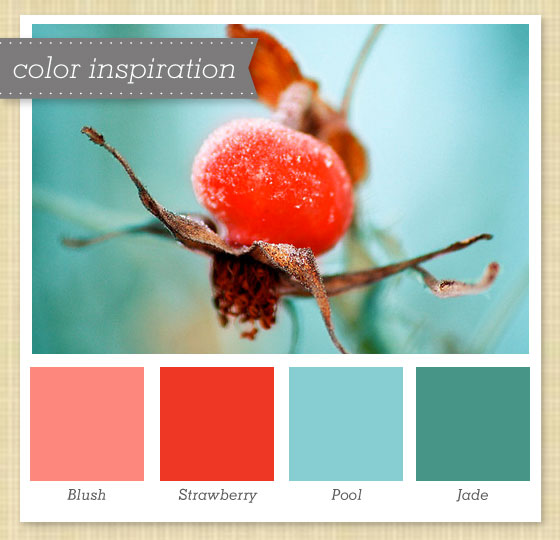 Pink Red Blue And Jade Color Palette