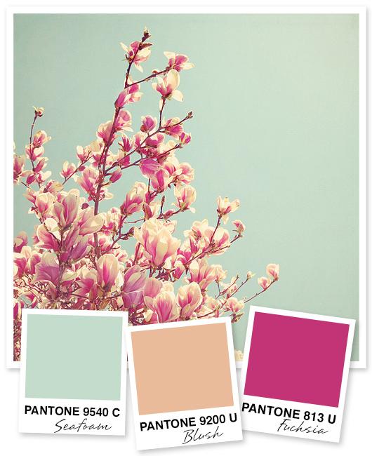 Mint Peach And Fuchsia Color Palette Sarah Hearts