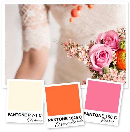 Cream Orange And Pink Color Palette