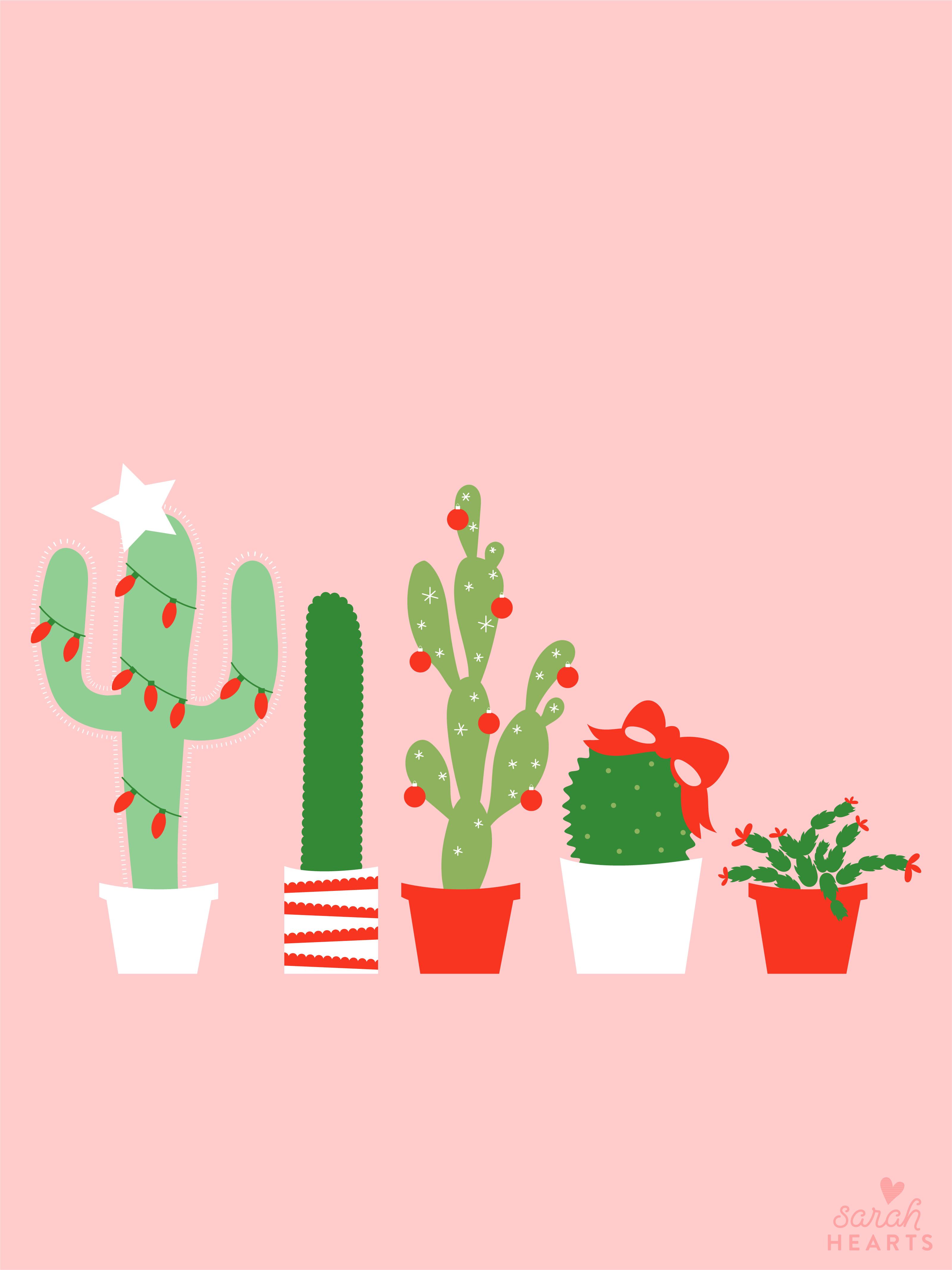 December 2017 Christmas Cactus Calendar Wallpaper Sarah