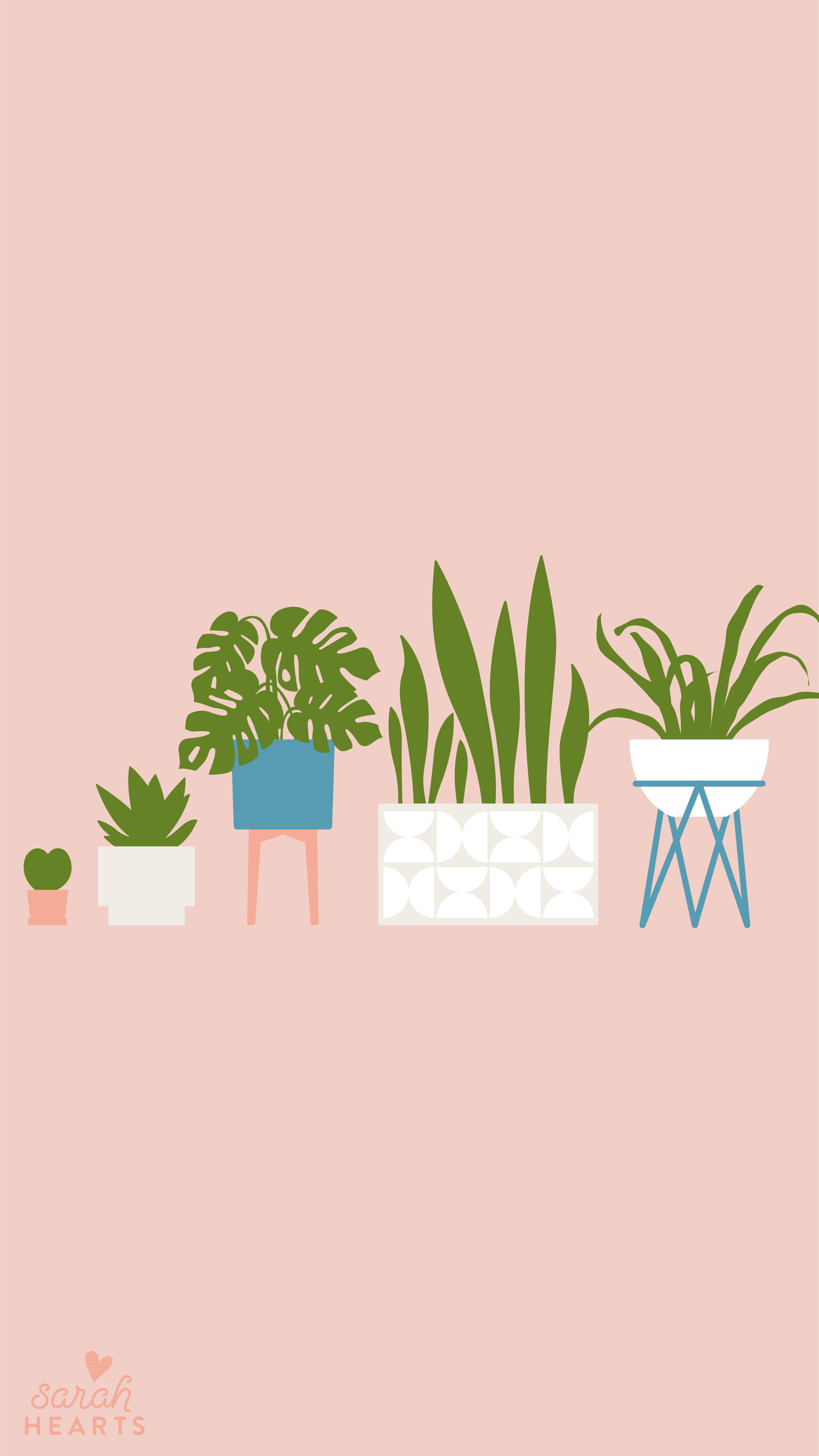 House Plant August 2019 Calendar Wallpaper Sarah Hearts